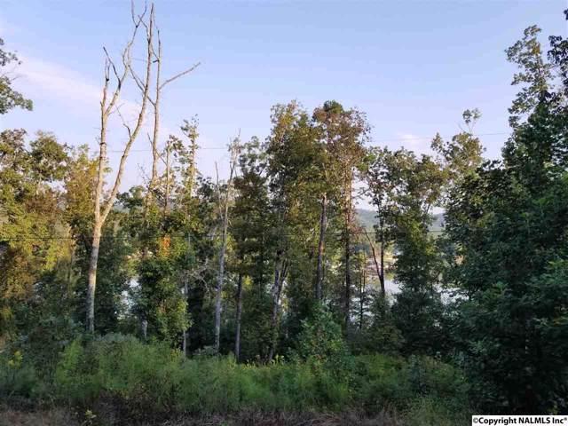 13 Waldrop Road, Ashville, AL 35953 (MLS #1103570) :: Amanda Howard Sotheby's International Realty