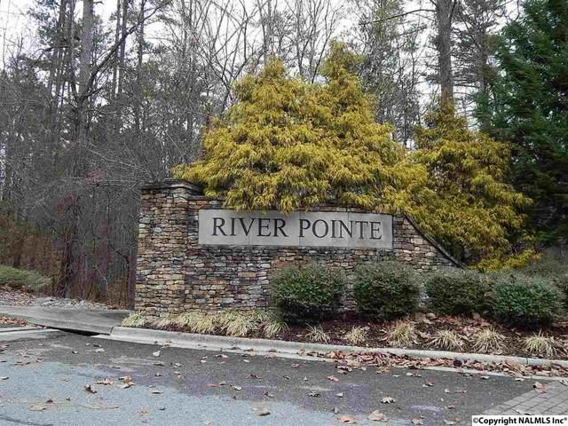 45 Panorama Way, Guntersville, AL 35976 (MLS #1103831) :: Southern Shade Realty