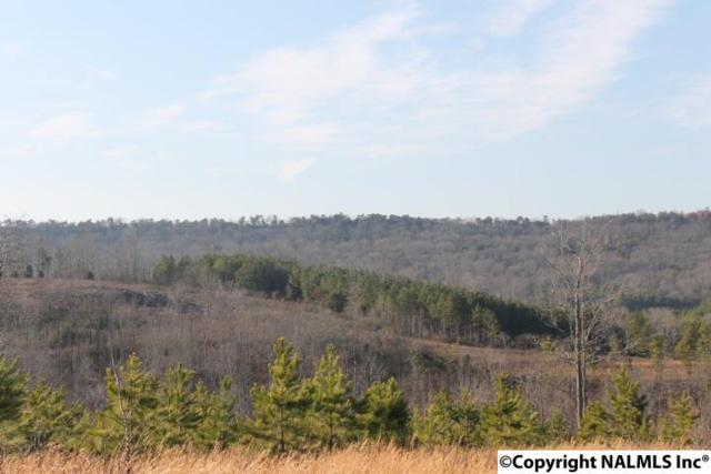 Lot 20 Foxfield Drive, Fort Payne, AL 35967 (MLS #1104499) :: Amanda Howard Sotheby's International Realty