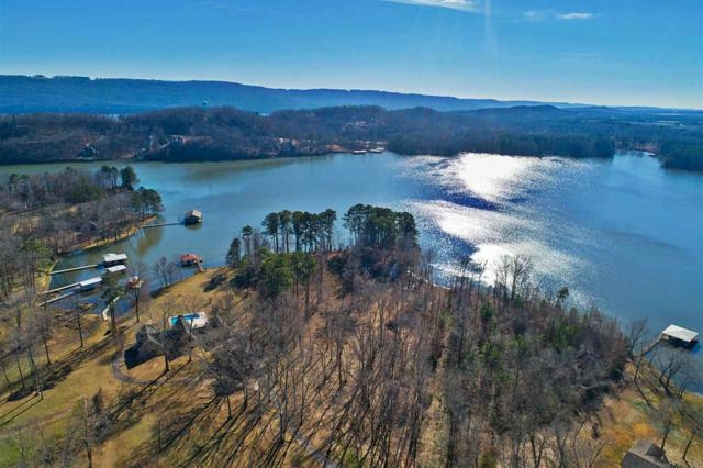 152 Starkey Drive, Scottsboro, AL 35768 (MLS #1107233) :: Capstone Realty