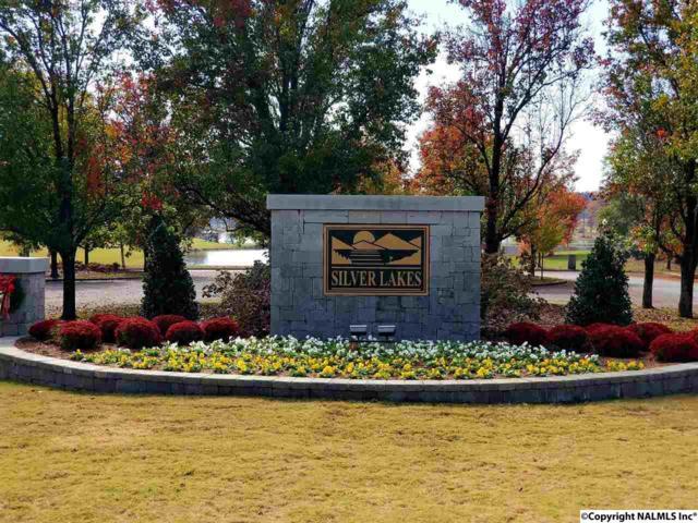 23 Silver Lakes Blvd, Glencoe, AL 35905 (MLS #1107569) :: Legend Realty