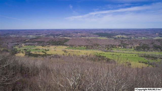 Lot 16 County Road 89, Mentone, AL 35984 (MLS #1108339) :: Amanda Howard Sotheby's International Realty