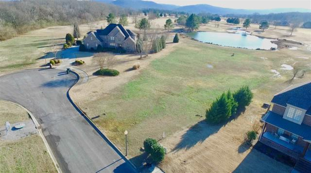 15 Birdie Road, Scottsboro, AL 35768 (MLS #1108869) :: Intero Real Estate Services Huntsville
