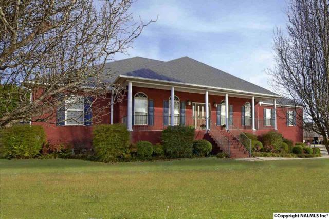 207 Steel Horse Drive, Madison, AL 35757 (MLS #1109667) :: Eric Cady Real Estate