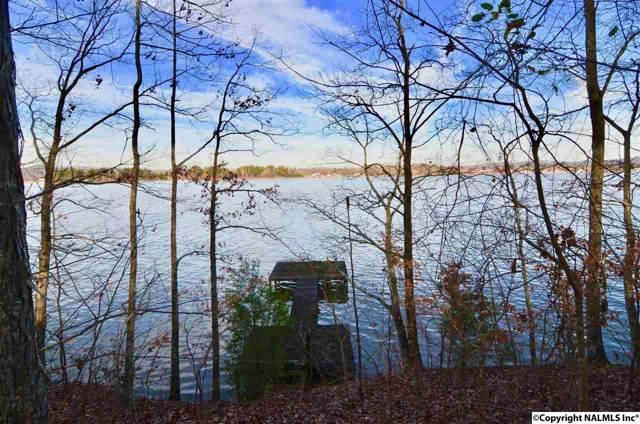 12 Lake Vista Drive, Rainbow City, AL 35906 (MLS #1109922) :: Capstone Realty