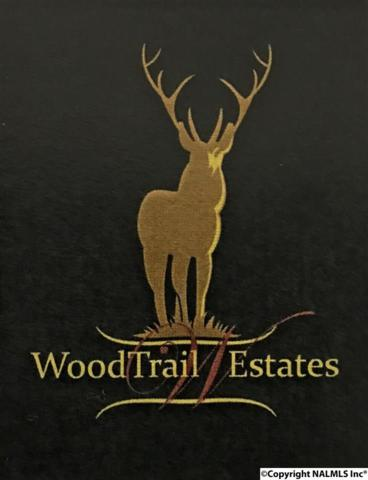 Lot 13 ADD III South Wood Trail, Decatur, AL 35603 (MLS #1110593) :: RE/MAX Distinctive | Lowrey Team