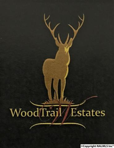 Lot 12 ADD III South Wood Trail, Decatur, AL 35603 (MLS #1110599) :: RE/MAX Distinctive | Lowrey Team