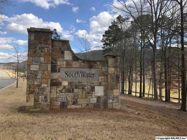 Lot 174 Village Circle, Guntersville, AL 35976 (MLS #1111011) :: Amanda Howard Sotheby's International Realty