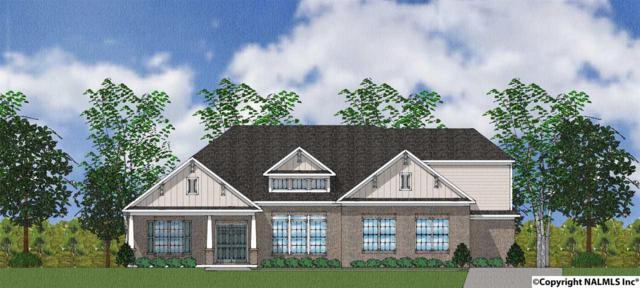 117 Citation Drive, Madison, AL 35756 (MLS #1111251) :: Eric Cady Real Estate