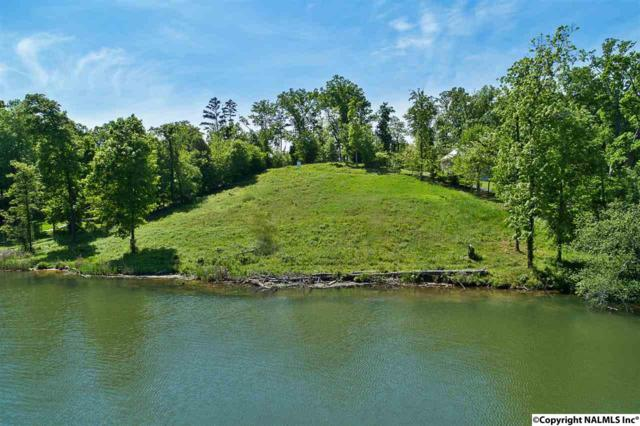 102 Signal Point Drive, Guntersville, AL 35976 (MLS #1111366) :: Intero Real Estate Services Huntsville