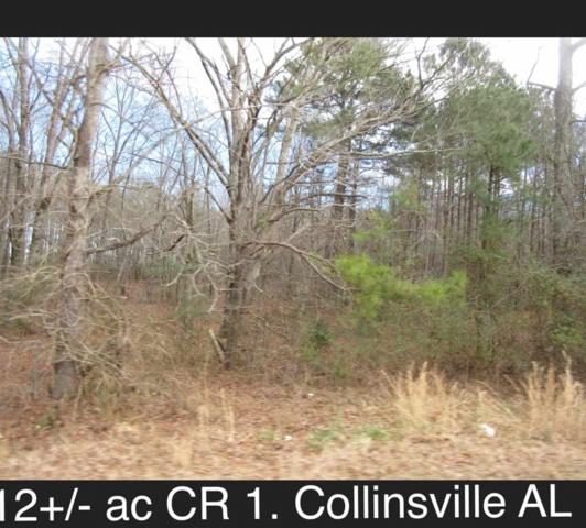 0 County Road 1, Collinsville, AL 35961 (MLS #1112500) :: Weiss Lake Realty & Appraisals