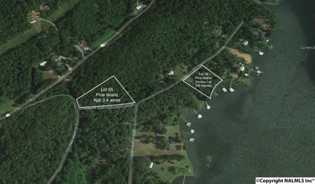 555555 Pine Island Circle, Scottsboro, AL 35769 (MLS #1112699) :: Legend Realty