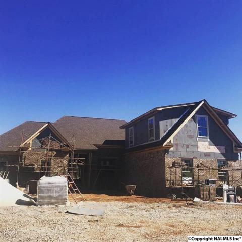 24244 Ransom Spring Drive, Athens, AL 35613 (MLS #1112799) :: The Pugh Group RE/MAX Alliance