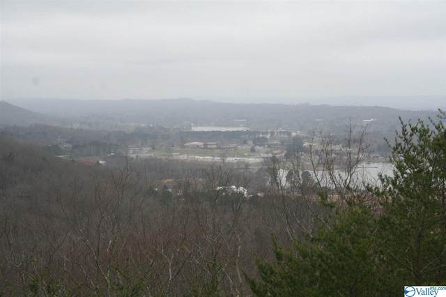19 Ridgefield Circle, Guntersville, AL 35976 (MLS #1113072) :: Southern Shade Realty