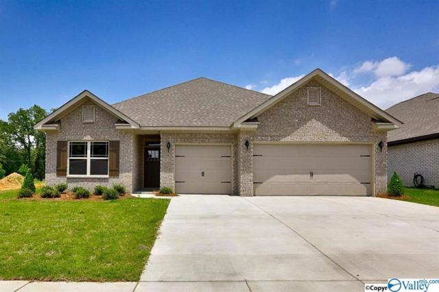 107 Cupolo Circle, Huntsville, AL 35806 (MLS #1113192) :: Capstone Realty