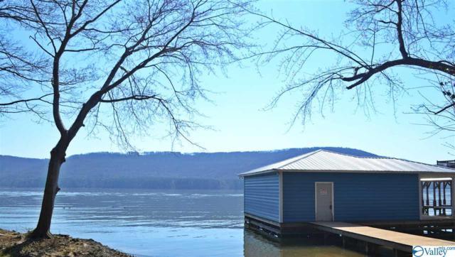 1983 Lookout Mountain Drive, Scottsboro, AL 35769 (MLS #1113669) :: Intero Real Estate Services Huntsville