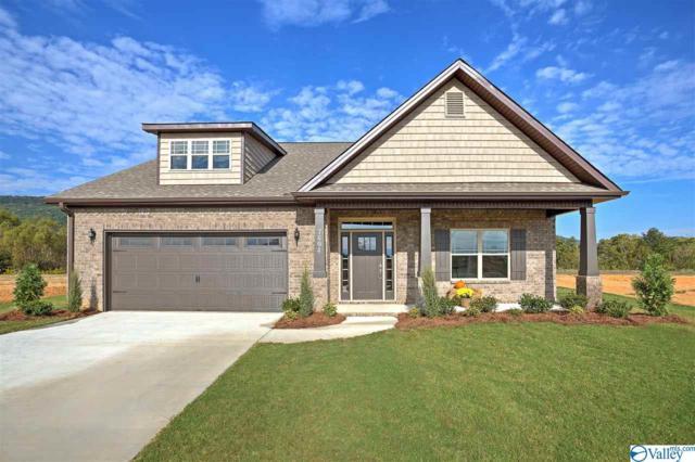 301 Fenrose Drive, Harvest, AL 35749 (MLS #1113764) :: Capstone Realty