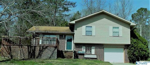 3812 Grand Avenue, Fort Payne, AL 35967 (MLS #1113874) :: Capstone Realty