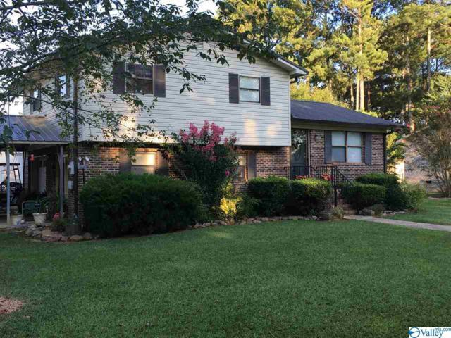 142 Springhill Drive, Rainbow City, AL 35906 (MLS #1114105) :: Amanda Howard Sotheby's International Realty
