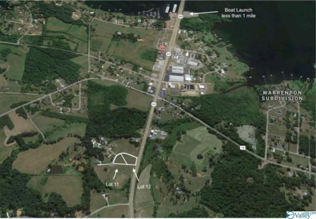 12 Eliza Lane, Guntersville, AL 35976 (MLS #1114290) :: Amanda Howard Sotheby's International Realty