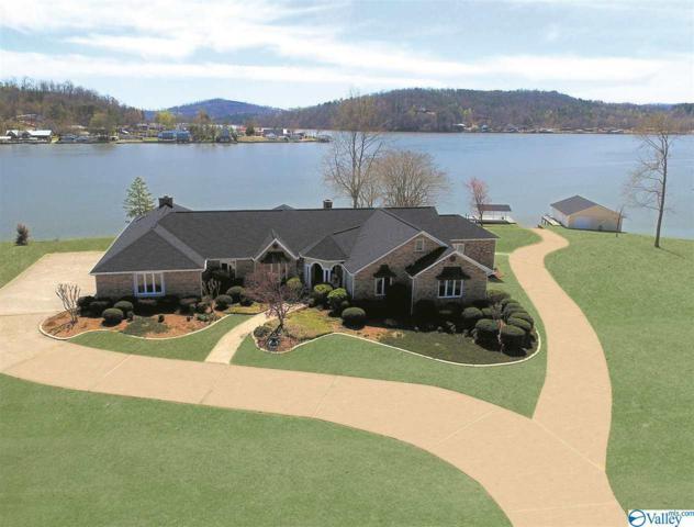 455 Bay Point Drive, Rainbow City, AL 35906 (MLS #1114461) :: Weiss Lake Alabama Real Estate