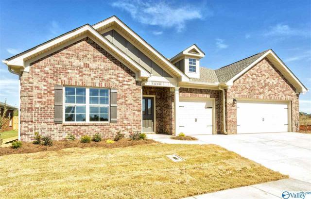 26156 Valley Ridge Road, Huntsville, AL 35756 (MLS #1114767) :: Capstone Realty