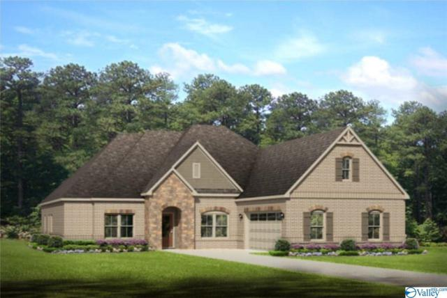 209 Island Reserve Circle, Huntsville, AL 35824 (MLS #1115178) :: Capstone Realty