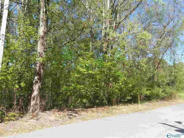 0 Newport Drive, Scottsboro, AL 35768 (MLS #1116071) :: Amanda Howard Sotheby's International Realty