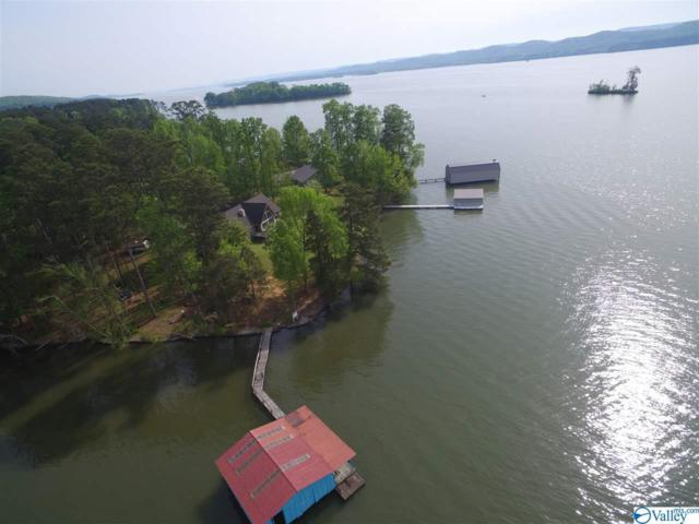 752 Camp Ney A Ti Road, Guntersville, AL 35976 (MLS #1116444) :: Legend Realty