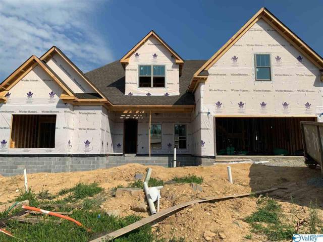 22259 Kennemer Lane, Athens, AL 35613 (MLS #1116572) :: Eric Cady Real Estate