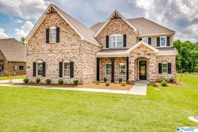 110 Creekmound Drive, Huntsville, AL 35806 (MLS #1117165) :: Amanda Howard Sotheby's International Realty