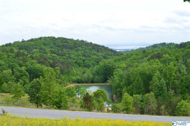 Lot 215 County Road 767, Cedar Bluff, AL 35959 (MLS #1117235) :: RE/MAX Distinctive | Lowrey Team