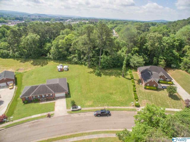 0 Ermine Drive, Huntsville, AL 35810 (MLS #1117440) :: Capstone Realty