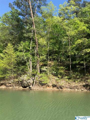 43 Sipsey Overlook Lot 43, Double Springs, AL 35553 (MLS #1117508) :: Amanda Howard Sotheby's International Realty