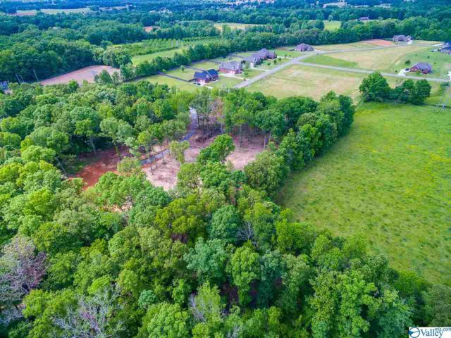10 Honeysuckle Drive, Fayetteville, TN 37334 (MLS #1117584) :: RE/MAX Distinctive | Lowrey Team