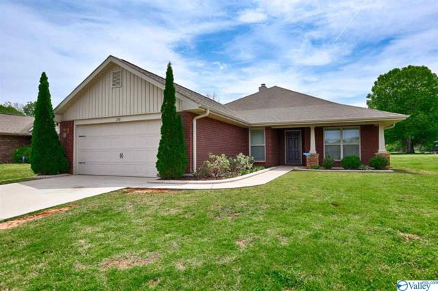 276 Village Springs Drive, Madison, AL 35756 (MLS #1117711) :: Intero Real Estate Services Huntsville
