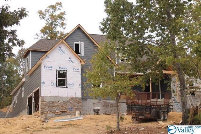 805 Lakewood Drive, Fort Payne, AL 35967 (MLS #1118919) :: Capstone Realty