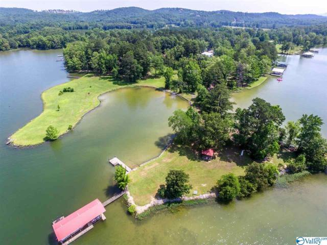 705 County Road 102, Cedar Bluff, AL 35959 (MLS #1119765) :: Amanda Howard Sotheby's International Realty