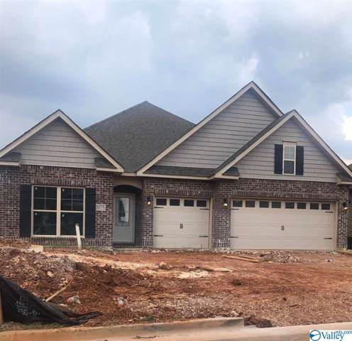 28575 Blythe Lane, Madison, AL 35756 (MLS #1119801) :: Amanda Howard Sotheby's International Realty