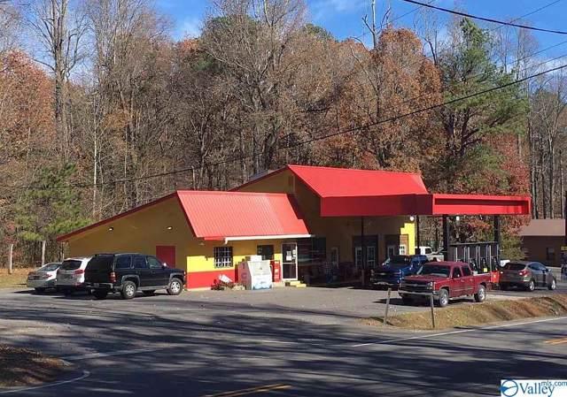 6010 Alabama Hwy 117, Mentone, AL 35984 (MLS #1119821) :: Weiss Lake Alabama Real Estate