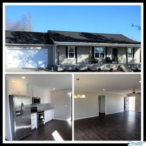 11892 Highway 227, Geraldine, AL 35974 (MLS #1120390) :: Intero Real Estate Services Huntsville