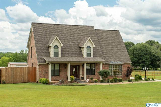 4106 S Chapel Hill Road, Decatur, AL 35603 (MLS #1120435) :: Capstone Realty