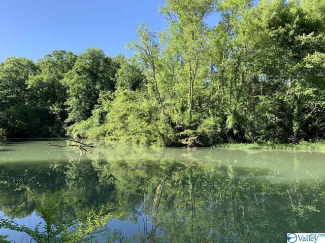220 County Road 165, Cedar Bluff, AL 35959 (MLS #1121981) :: Amanda Howard Sotheby's International Realty