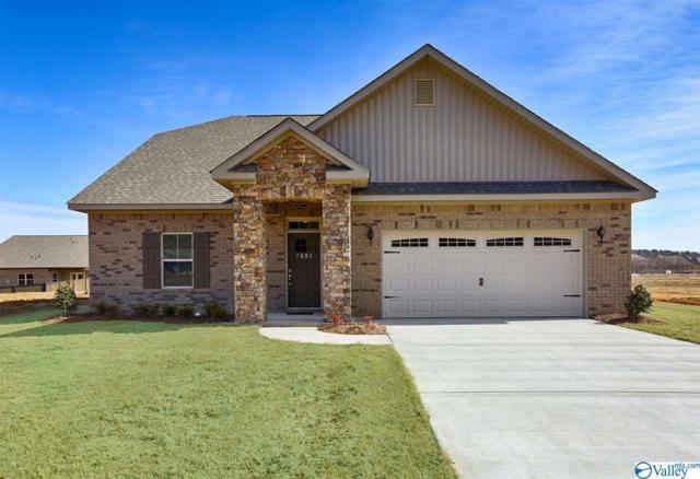 104 Sherwin Avenue, Huntsville, AL 35806 (MLS #1123282) :: Capstone Realty