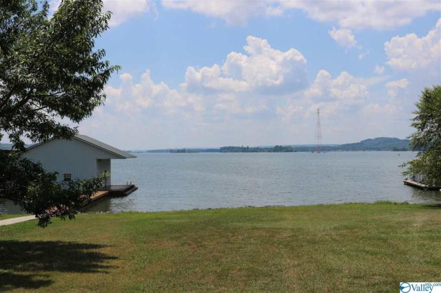 474 Milky Way Road, Guntersville, AL 35976 (MLS #1123406) :: Intero Real Estate Services Huntsville