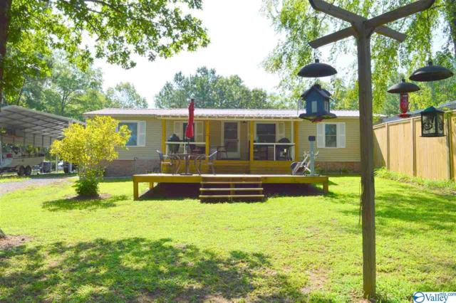 685 County Road 671, Cedar Bluff, AL 35959 (MLS #1125228) :: Intero Real Estate Services Huntsville