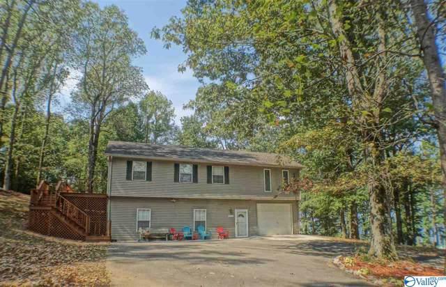 1177 Lakeshore Drive, Langston, AL 35755 (MLS #1125451) :: Capstone Realty
