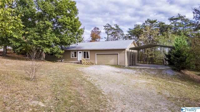 9840 County Road 103, Mentone, AL 35984 (MLS #1125546) :: Capstone Realty