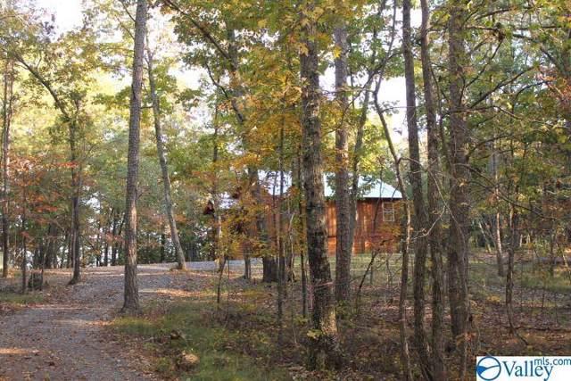 1600 County Road 103, Mentone, AL 35984 (MLS #1125898) :: Capstone Realty
