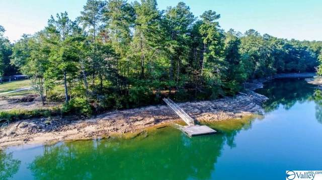 Lot 175 Stoney Point Road, Double Springs, AL 35553 (MLS #1126620) :: Amanda Howard Sotheby's International Realty